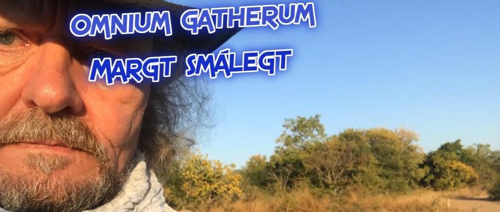 Omnium gatherum / Margt smálegt... - Hausmynd